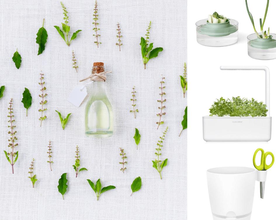 5 stijlvolle manieren om zelf kruiden te kweken.