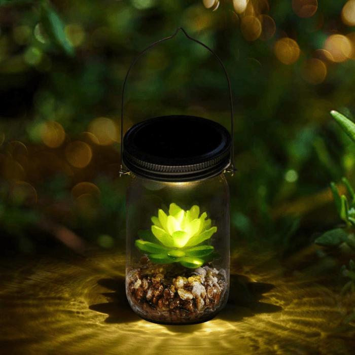 mini ecosysteem met vetplant en licht door zonne-energie